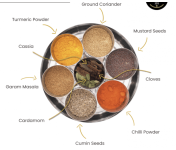 INDIAN SPICE TIN WITH SARI WRAP | 9 SPICES | GIFT OF THE YEAR WINNER