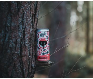 Arrowtown Red Berries Hard Seltzer - 12 x 330ml cans