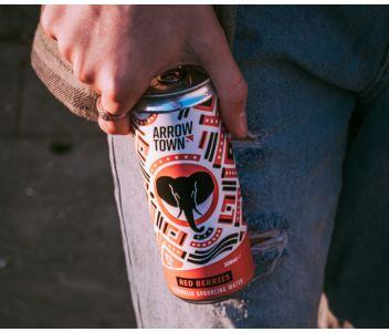Arrowtown Mixed Case Hard Seltzer - 12 x 330ml cans
