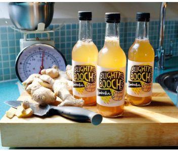 Organic Ginger Kombucha