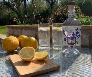The Tarbay Botanist Windsor Batch Gin
