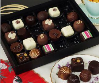 Coastal Cocoa Complete Selection - 24 pc Box