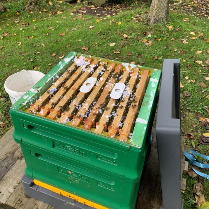 Rookery Farm Honey